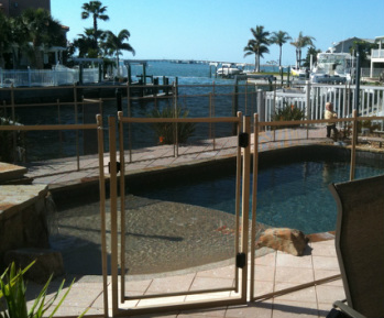 Pool Fence gate or baby gate in Largo fl